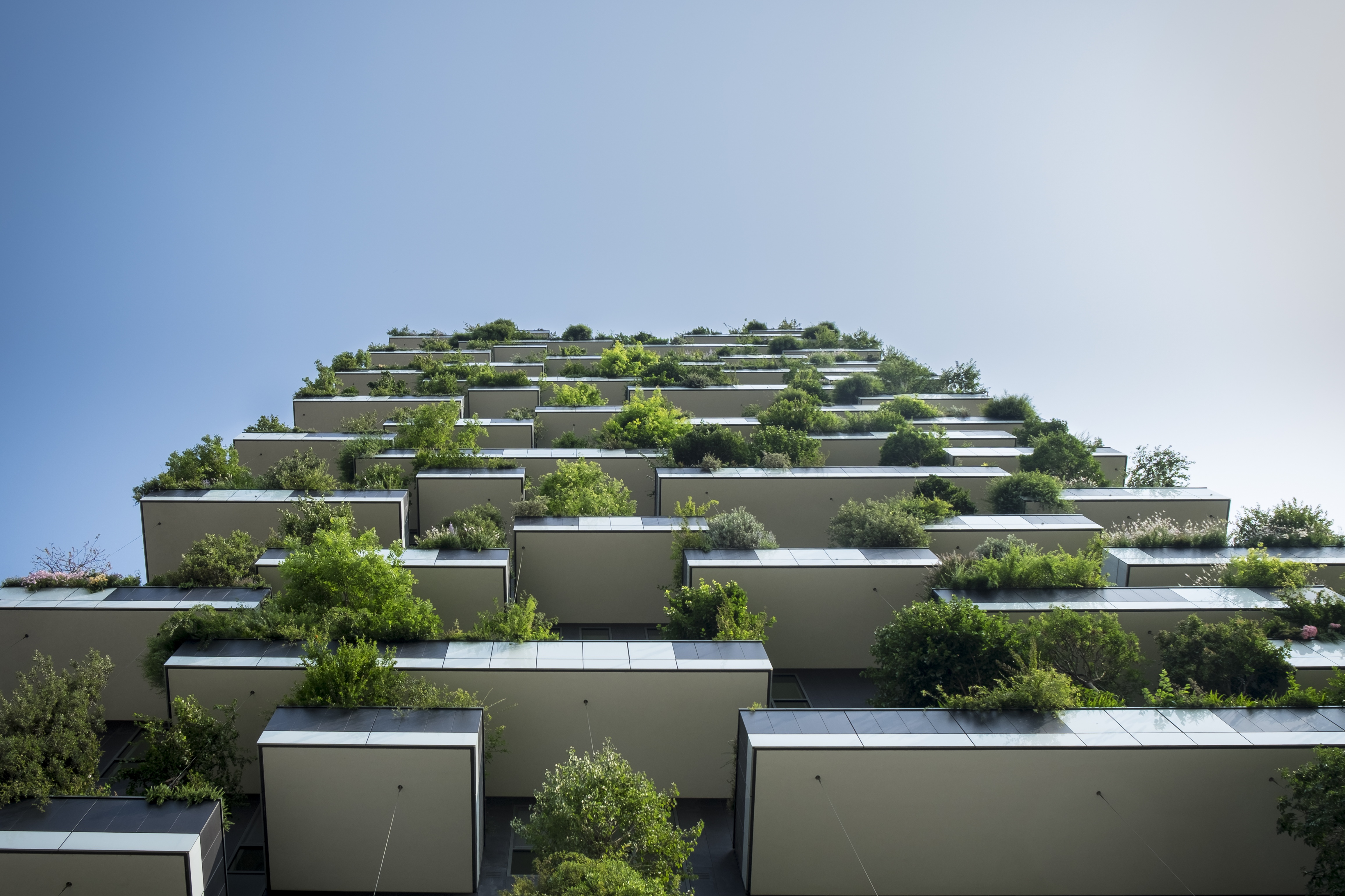 By Natalie Campbell. Farming Cities  the Potential Environmental Benefits of Urban